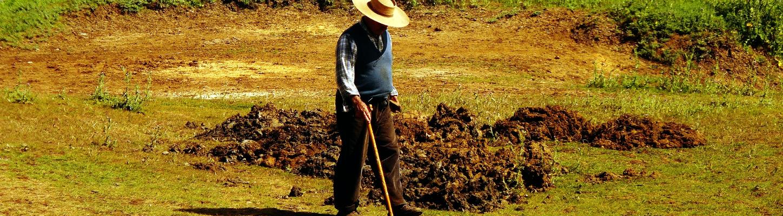 Proyectos agraria