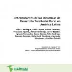 """""""Determinantes de las Dinámicas de Desarrollo Territorial Rural en América Latina"""". Documento de Trabajo N°101"""